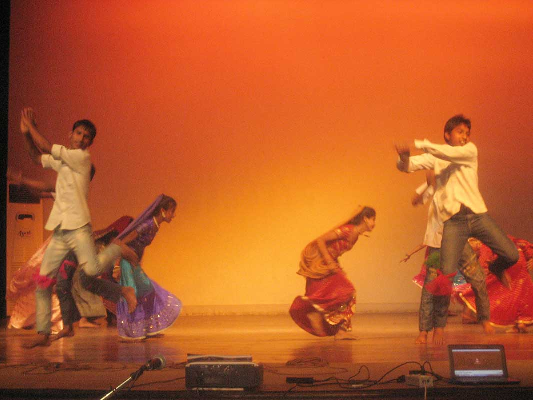 Annual Function at NSS-LSR 2012-03-27
